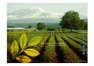 목차 회사소개 농장소개 농법소개 연구소소개 전략적 제휴 관련 싸이트