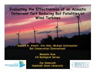 4.BWEC Science Meeting 1-10-2012 Deterrents - Bats and Wind ...