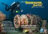 Issue 23 - Stingray Divers