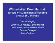 White-tailed Deer Habitat: - Caesar Kleberg Wildlife Research Institute