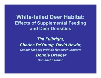 White-tailed Deer Habitat: - Caesar Kleberg Wildlife Research Institute