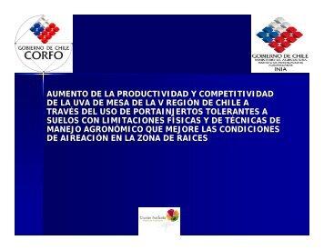 AUMENTO DE LA PRODUCTIVIDAD Y COMPETITIVIDAD DE ... - INIA