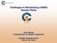 Challenges in Refurbishing CANDU Nuclear Plants - Organization of ...