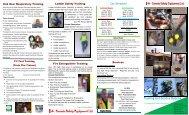 training brochure - Canada Safety Equipment