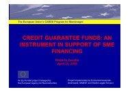 presentation on credit guarantee schemes - Economisti Associati Srl