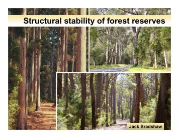 Maintaining forest structure in reserves