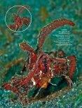 Die Vermessung des Ozeans - Docwarter.com - Seite 5