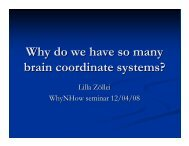 Why do we have so many brain coordinate systems?