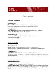 Apresentações orais - Universidade do Minho