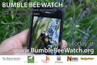 bumblebeewatch-postcard - The Xerces Society