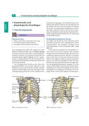 1 Anatomische und physiologische Grundlagen