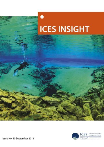 Insight Issue 50