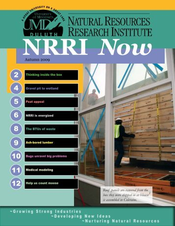 Autumn 2009 - Natural Resources Research Institute - University of ...