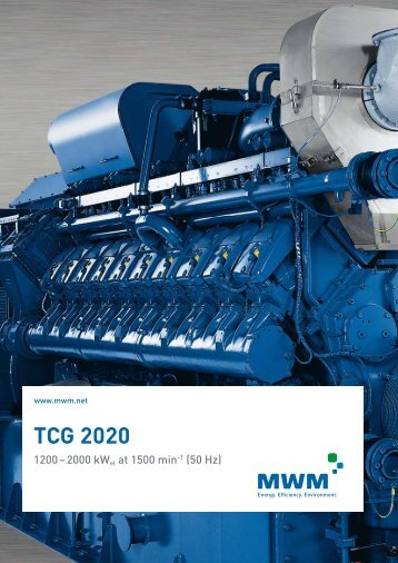 TCG 2020 - LT
