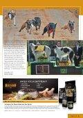 Derby-Wochenende - Baerbel-und-manfred-mueller.de - Seite 4