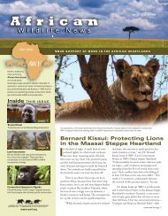 Bernard Kissui: Protecting Lions in the Maasai ... - African Wildlife