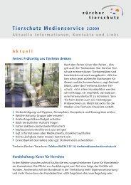 ZT Newsletter 4 2008