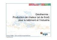 Bois énergie géothermie - BRGM - DERBI 2007.pdf