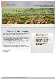 Kilimanjaro og safari i Tanzania - MarcoPolo