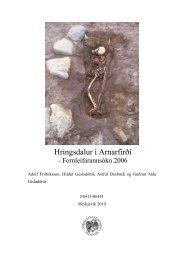 Hringsdalur í Arnarfirði - Nabo