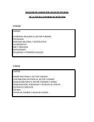 RELACION DE CURSOS POR CICLOS DE ESTUDIOS ... - Cenfotur