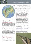 Hvorfor ringmærkes fugle? - Zoologisk Museum - Page 3
