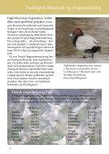 Hvorfor ringmærkes fugle? - Zoologisk Museum - Page 5