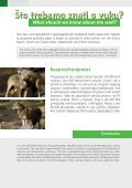Wolves in Croatia - Page 2
