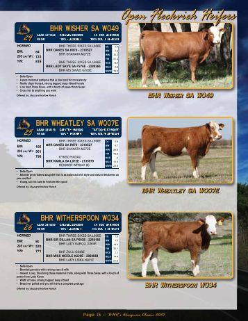 Page 15 - Buzzard Hollow Ranch