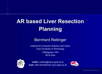 Resection Planning - Graz University of Technology