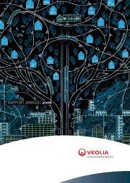 Rapport Annuel 2006 - Veolia Finance - Veolia Environnement
