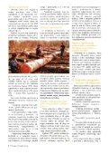 Kasno je gasiti, treba spriječiti - Hrvatske šume - Page 4