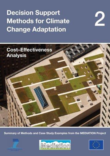 Cost-Effectiveness Analysis - Mediation