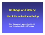 Cabbage and Celery: Herbicide activation with drip November 8, 2011
