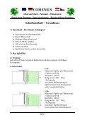 Faustball Methodik Dt..pdf - Seite 2
