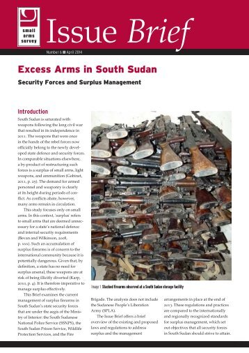 SAS-IB6-Excess-Arms-in-South-Sudan