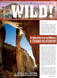 The National Park Service And Wilderness - New Mexico ...