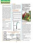 Le feu bactérien - Page 2