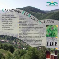 CERI leaflet I - The Carpathian EcoRegion Initiative
