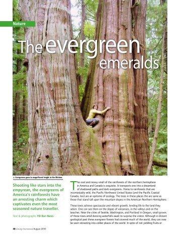 The emeralds - TreeOctopus.Net