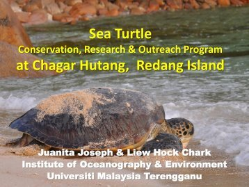 Sea Turtle Conservation, Research & Outreach Program at Chagar ...