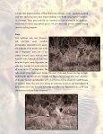 The Northern Tuli Predator Project - Page 2