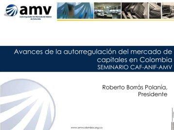 Roberto Borras - AMV - ANIF