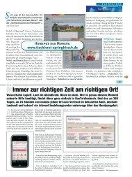 Homepge des Monats: www.tischlerei-springhirsch.de