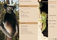 Flyer Fotoausstellung Madaskar - Tiergartenfreunde Heidelberg eV