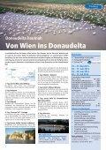 Flussreisen - SabTours Wels - Seite 4