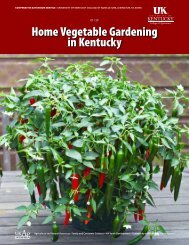 ID-128: Home Vegetable Gardening in Kentucky - in the College of ...