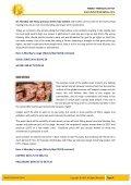 Untitled - Prophesies of Mahendra Sharma - Page 4