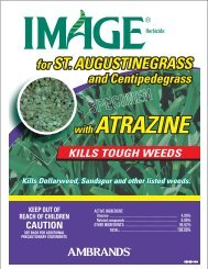 Image for St. Augustinegrass - Walter Reeves