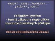 Papajík T., Raida L., Procházka V., Indrák K.